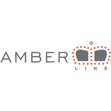 Benzininis grandininis pjūklas AMBER-LINE C-CLASS C-451, 2.5 Kw 3