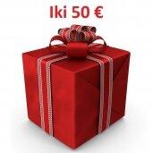 Dovanų idėjos iki 50 eur