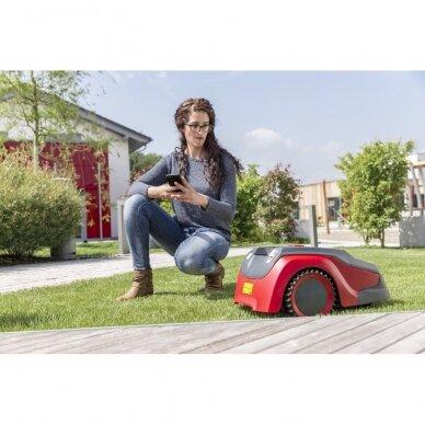 Vejos pjovimo robotas solo by AL-KO Robolinho® 700 I 4